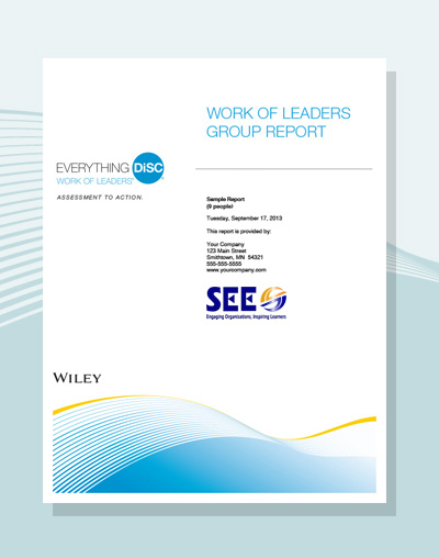 Work of Leaders Group Report