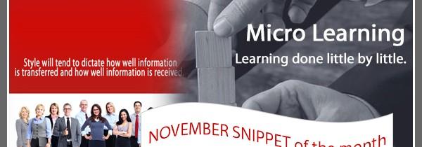 Bonus November Snippet: Communication Style Matching